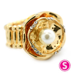 740_ring-goldkit1nov-box02 (1)