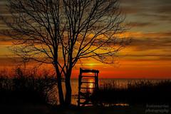 Sunrise Müritz (b.stanni) Tags: sun lake nature clouds sunrise see licht lappland natur wolken landschaft sonne sonnenaufgang baum