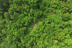 Nam_Et-Phou_Louey_National_Protected_Area_Drone_Aerial_Shot_Salt_Lick_The_Nests_Tour_Tiger_Trail_Photo_By_Cyril_Eberle (Tiger Trail Laos) Tags: tourism fauna trekking nationalpark wildlife tiger conservation jungle species birdwatching rare forests biodiversity ecotourism saltlick nightsafari wcs wildlifeconservationsociety protectedarea namet nepl wildlifeprotection viengthong phoulouey nametphoulouey biodiversityconservationarea muanghiem meaunghiem