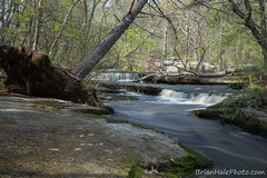 3watermark (Brian M Hale) Tags: ri trees west fall water river island waterfall spring woods stream brian greenwich newengland falls rhode hale secluded stepstone stepstonefalls brianhalephoto