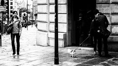 The Kiss, Paris, 2015 (KSWest) Tags: street travel blackandwhite paris france photoshop kiss flickr noir sony photograph nik embrace fra lightroom voyuer 2015 silverefex kswest stevenwest copyright2015
