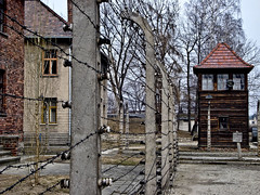 Horror en Auschwitz-Birkenau (LL Poems) Tags: camp concentration flickr poland krakow horror auschwitz birkenau tejuelo jatejuelo