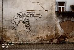 Bume? (Aaron T Jones) Tags: flower building tree architecture germany deutschland graffiti nikon down run future bleak rhine rhein rheinland rhineland pfalz rheinlandpfalz dystopia dystopian bingen d60 palatinate