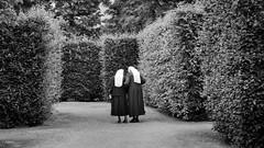 Silence in the maze (MrProd) Tags: vienna wien city white black art monochrome austria sterreich nikon europe outdoor sigma nun silence maze dslr labyrinth schoenbrunn nonne 1835 d7200
