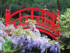 Japanese garden 10 (Frans Schmit) Tags: japanesegarden denhaag thehague clingendael japansetuin fransschmit