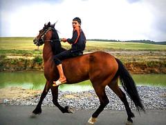 Monte  cru (habib kaki 2) Tags: horse cheval algeria cavalier monte algerie chevalier enfant kheira cru alger  equitation      mahelma magtaa