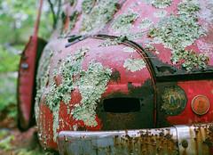 Lichenmobile (Robert Jack Images) Tags: cars film volvo ishootfilm oldcar carporn