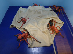 Ants in Pants (Steve Taylor (Photography)) Tags: city blue newzealand christchurch sculpture brown art museum insect fun model shiny pants excited canterbury nz ants southisland cloth fidget antsinyourpants