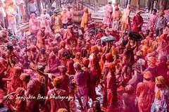 Barsana Nandgaon Lathmar Holi Low res (33 of 136) (Sanjukta Basu) Tags: holi festivalofcolour india lathmarholi barsana nandgaon radhakrishna colours
