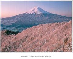Postcrossing US-4075741 (booboo_babies) Tags: mountfuji mountain japan postcrossing