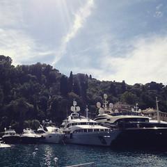 Foto-18-06-16-16-29-28 (fdpdesign) Tags: camogli portofino escursionismo 2016 liguria italia italy apple iphone mare monti sentieri sea instagram