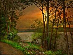Sublime solitude (Jan 130) Tags: sunset cumbria windermere textured englishlakedistrict