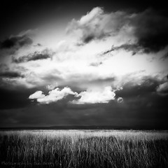The Sky Above (Fiverdog) Tags: beach grass clouds dark coast seaside sand foreboding lytham coastal drama britishseaside fylde britishcoast