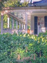 Rip Van Winkle Gardens Jefferson Island Louisiana Antebellum Home Mansion History LMA1705 (Dallas Photoworks) Tags: rip van winkle gardens jefferson island louisiana subtropical lush