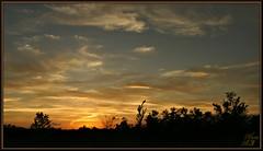 Twilight time (WanaM3) Tags: landscape twilight scenery texas sony scenic houston vista civiltwilight a700 sonya700 wanam3