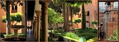 Jardin de Lindaraja, Palais Nasrides, Alhambra, Granada, Andalucia, Espana (claude lina) Tags: claudelina espana spain espagne andalucia andalousie granada grenade ville town architecture alhambra palaisnasrides jardins gardens jardindelindaraja