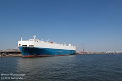 Flandria Havenrondvaart [14] (Werner Wattenbergh) Tags: flandria ferry schip veerboot antwerpen belgie bel