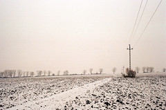 winter I. (analogrem) Tags: poles wires winter analog film analogue canon a1 overcast landscape monochrome sepia fields emptiness