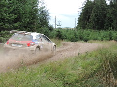 Grampian Stages Rally 2016 (RS Pictures) Tags: src scottish rally championship coltel grampian stages stage 2016 durris ss forest forestry road track special ss6 2 peugeot 208 r5 motorsport auto