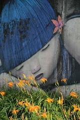 IMG_0491 (BrellLi) Tags: 台灣 taiwan 花蓮 hualien 富里 fuli 六十 六十石山 金針花 orangedaylily 花 flora 戶外 outdoors canon 6d canon6d 壁畫 mural sigma24105mmart