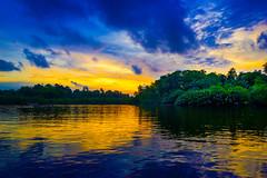 The Gathering Storm... (mehtasunil) Tags: purple sky sea seascape sunset water beach travel blue sun clouds beautiful storm srilanka bentota leicalens leicaq leicaimages leicacamera leicaforum leicaindia leica indiapictures indiashutterbugs