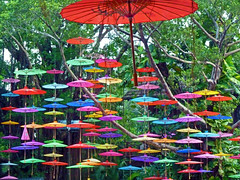 Umbrellas (hdzimmermann) Tags: umbrellas china schirme bunt colors farben shenzhen