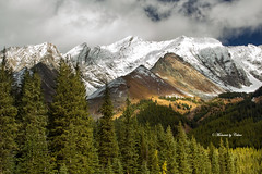 Sun and Shadows (Explored) (Canon Queen Rocks (1,050,000 + views)) Tags: outdoors landscape landscapes mountains nature snowcapped trees shadows clouds sky highwoodpass alberta canada rockies contrast mountain mountainpeak mountainside