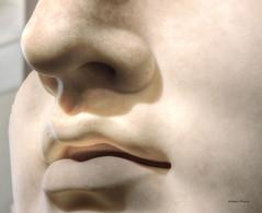 sculpture (albyn.davis) Tags: sculpture art statue museum face nose lips shadows light