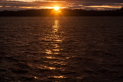 IMG_1654-1 (Andre56154) Tags: schweden sweden sverige schren archipelago wasser water ufer kste coast sonne sun himmel sky cloud wolke sonnenuntergang sunset reflexion reflection spiegelung