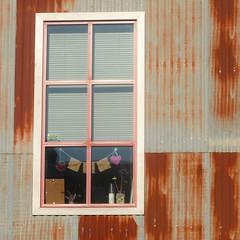 "window on ""the bridge street project"" (msdonnalee) Tags: window ventana fenster fentre janela rust thebridgestreetproject corrugatedsteel rustymetalsiding nevadacity dwwg rustymetal finestra explore"