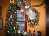 DSCN5475 (gaila3) Tags: christmas housetour 2014 oceangrovenj victoriantour