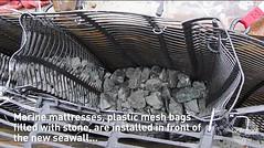 Seawall Progress October 29, 2014 seawall_screengrab_mattress1 (Seattle Department of Transportation) Tags: seattle video screenshot salmon progress seawall transportation habitat sdot marinemattress