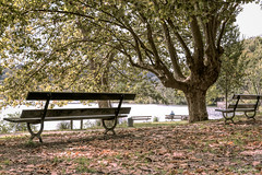 Delicious Solitude (Ro Cafe) Tags: naturaleza nature landscape solitude loneliness soledad nikond600