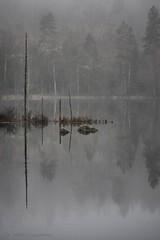 20141122067436 (koppomcolors) Tags: sweden sverige scandinavia värmland varmland koppomcolors