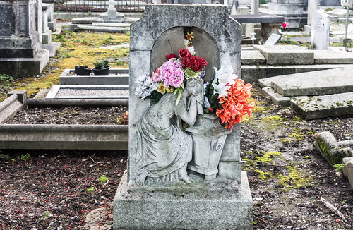 Mount Jerome Cemetery & Crematorium is situated in Harold's Cross Ref-100489