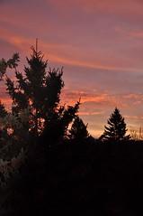 Sunset in Vårberg (Mister.Marken) Tags: vårberg