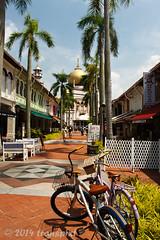 20140907_0906 (transpixt) Tags: travel singapore southeastasia p sg
