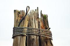 Cable Wrap (Orbmiser) Tags: autumn fall oregon portland nikon logs cable pylons d90 55200vr