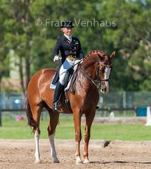 150118_Clarendon_8148.jpg (FranzVenhaus) Tags: horses sydney australia riding newsouthwales athletes aus equestrian supporters riders officials dressage spectatorsvolunteers