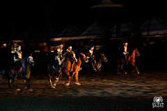 Spettacolo equestre (andrea.prave) Tags: horse music caballo cheval dance danza traditional morocco maroc musica marocco marrakech marrakesh cavalli cavallo pferd cultura cultural     moroccans equestre chezali almamlaka  marocchini marocains    visitmorocco almaghribiyya tourdelmarocco tradionale