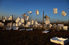 IMGP0951b-stavrosstam (stavrosstam) Tags: street color fence wind box polystyrene
