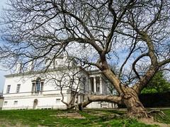 Nice and warm Spring day (manateedugong) Tags: park uk england house tree london westlondon chiswick