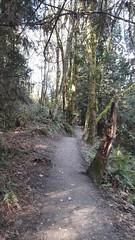 20160331_100407 (ks_bluechip) Tags: creek evans trails preserve sammamish usa2106