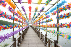 Colorful windmills (MelindaChan ^..^) Tags: china color windmill colorful pattern mel melinda turning jiangsu xinghua   chanmelmel melindachan