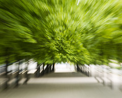 "zoom blur (Vidar ""the Viking"" Ringstad, Norway) Tags: park city longexposure trees blur berlin nature germany deutschland leaf spring cool warm artistic zoom twist handheld gravel drawnin canoneos5dmkiii"