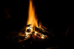 Fire (cpt_ahmed93) Tags: nature fire aswan