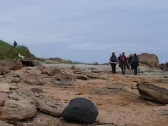 boulders (Brian Cairns) Tags: saintandrews cambo fifecoastalpath kingsbarns brianbcairns therockandspindle buddoroack