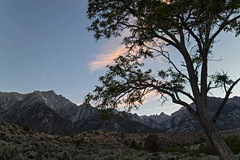 Sunset Mt. Whitney (socaltoto11) Tags: mtwhitney california canonphotography californiamountainranges california395 westcoast westcoastlandscapes westcoastmountainranges spring snowcappedmountains sunsets mountains mountainranges mountainsunsets owensvalley lonepine highestsummitinus inyonationalforest sierranevadamtrange