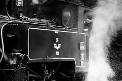Daily routine (crystyradulescu) Tags: wood bw train de logging steam romania locomotive mechanic sus cff mocanita viseul