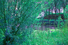 FA_001 (Dutch_Chewbacca) Tags: nature netherlands spring fort sunny dijk brabant 1877 landschap 1880 waterlinie nieuwe 1847 altena brabants hollandse uppel gantel uppelse schanswiel